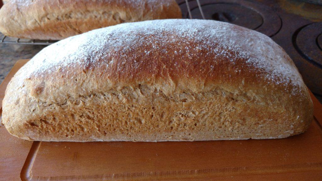 pão feito em casa com cerveja